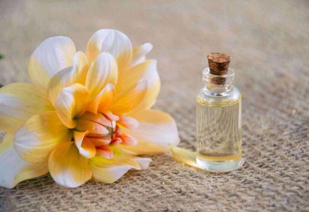 Bulgari Parfüm für Damen und Herren