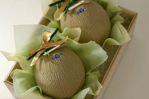 yubari melone insel hokaiddo