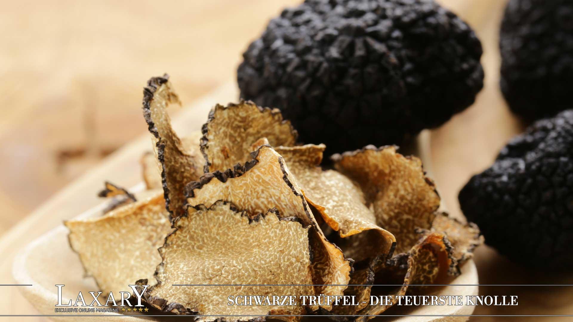 Die teuerste Knolle der Welt - Schwarze Trüffel