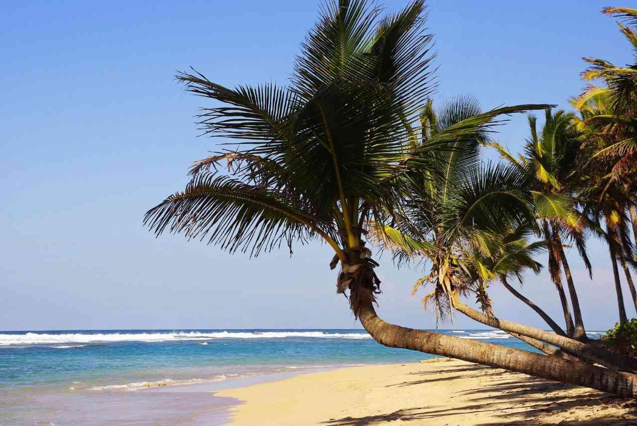 Die Dominikanische Republik: Traum in der Karibik
